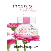 Incanto Lovely Flower